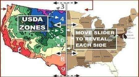 USDA Hardiness Zone Map | Find your Area ZIP Code Search Match