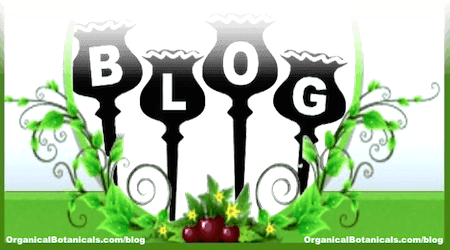 BLOG - Organical Botanicals