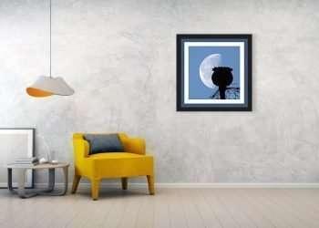 CHAIR-poppy-pod-silhouette-lunar-eclipse-of-moon-papapver-somniferum-jordan-w