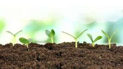 Footer-soil-NEW-short-1280x720