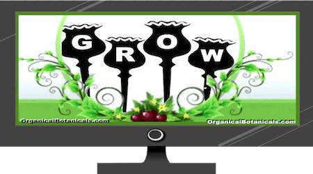 Grow Poppies (FULL Version)