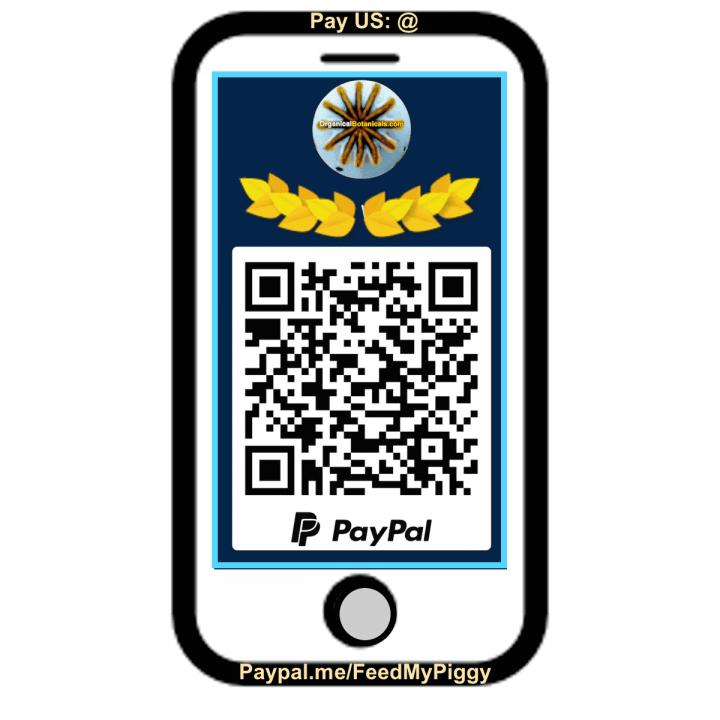 Paypal ME qr code