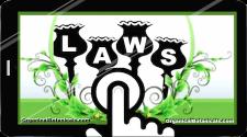 Poppy Laws Banner