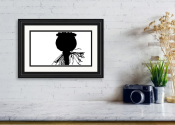 Papaver Somniferum Black n White Silhouette