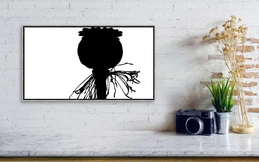 WALL-ART_black-poppy-white-sky